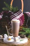 Cup of hot and tasty chocolate with Toasted Marshmallow Vertical Toned Christmas Drink Fir Branches Picnic Basket Blanket Stock Photography