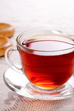 Cup of hot tea royalty free stock images