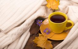 Cup of hot tea and autumn leaves Royalty Free Stock Photos