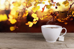 Cup of hot tea. On background lanscape summer autumn royalty free stock images