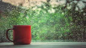 A cup of hot tea in the background rain outside the window. Selective focus royalty free stock photo
