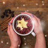 Cup of Hot Tea with Berry and Apple Cinnamon Spices Wooden background Christmas Food Concept Top View Female Hands Holding Cup of. Tea Snow Square royalty free stock images