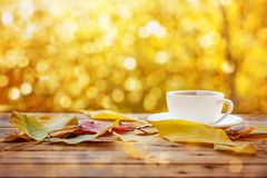 Cup of hot tea or coffee on nature background. Concept autumn mood. Stock Photo