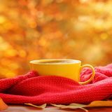 Cup of hot tea or coffee on nature background. Concept autumn mood. Royalty Free Stock Images