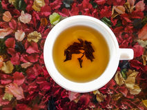 Cup of hot tea on colorful artificial flowers background. Stock Image