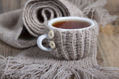 A cup of hot tea in cover - warmer Royalty Free Stock Photography