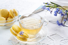 A cup of hot tea, flowers blue snowdrop, sketchbook and lemon macaroons on a light background Stock Images