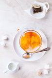 Cup of hot tea Royalty Free Stock Photography