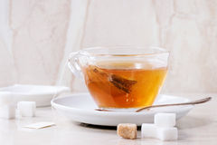 Cup of hot tea Stock Image