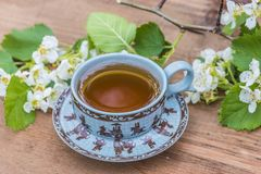 Sprint tea time in asian style Royalty Free Stock Images