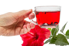 Cup of hot tea with hibiscus Royalty Free Stock Photography