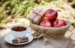 A cup of hot tea and juicy red apples. Autumn and harvest. Tea with apples and cinnamon. Stock Photography