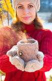 Cup of hot tea in a knitted cover, Stock Images