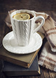 Cup of hot tea with lemon, books and scarf Stock Photography
