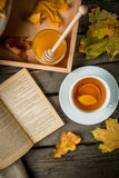 Cup of hot tea with lemon and ginger on a rustic table Stock Image