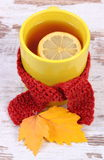 Cup of hot tea with lemon wrapped woolen scarf and autumnal leaves, warming beverage for flu Royalty Free Stock Photography