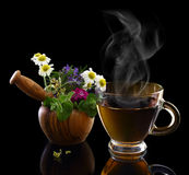 Cup of hot tea and mortar with herbs Royalty Free Stock Photo