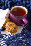 Cup of hot tea, oatmeal cookies and warm scarf Royalty Free Stock Photography