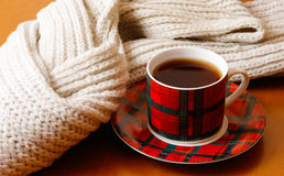 Cup of hot tea and scarf Royalty Free Stock Photos