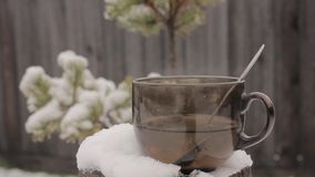 Cup with hot tea on a snow-covered stump, on a fence and spruce branch backdrop. Vacation and countryside stock footage