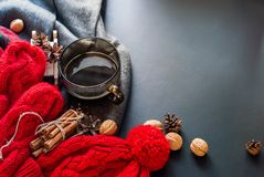 Cup Hot Tea Steam Red Knitted Cloth Winter Time Royalty Free Stock Photography