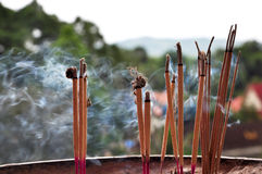 A cup of incenses Royalty Free Stock Photography