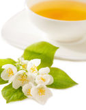 Cup of the jasmin tea Royalty Free Stock Photos