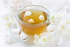 Cup jasmin tea Royalty Free Stock Photography