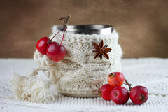 Cup in knitted cover Royalty Free Stock Images