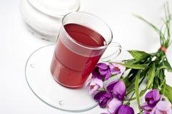 cup kwiat herbaty szklanej czerwonej Fotografia Royalty Free