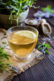A cup of lavender tea Royalty Free Stock Images