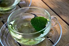Cup of lemon balm tea royalty free stock images