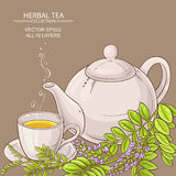 Cup of licorice tea and teapot Stock Images