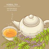 Cup of licorice tea and teapot Royalty Free Stock Photos
