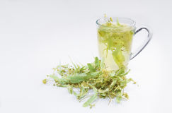 Cup of linden flower tea with blossoms inside Royalty Free Stock Photos