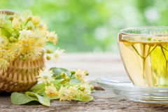 Cup of linden tea and basket with lime flowers. Cup of linden tea and wicker basket with lime flowers, herbal medicine royalty free stock image