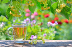 Cup with linden tea and flowers Stock Photo