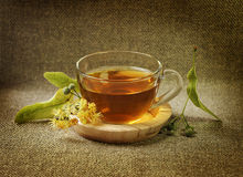Cup with linden tea and flowers Stock Photos