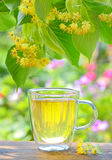 Cup with linden tea and flowers on wooden table Stock Photography