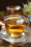 Cup of linden tea with linden flowers in sunshine Royalty Free Stock Images