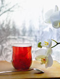 Cup of linden tea and orchid. In front of the window Royalty Free Stock Photos