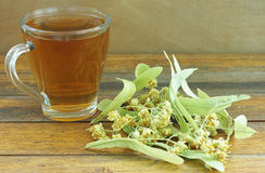 Cup of linden tea Stock Photos
