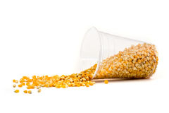 Cup made from corn Royalty Free Stock Photos