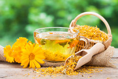 Cup of marigold tea and calendula flowers. Cup of healthy marigold tea and calendula flowers Royalty Free Stock Image