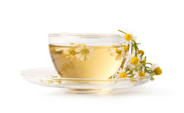 Cup of medicinal chamomile tea Stock Photography