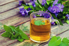 A cup of melissa herbal tea. On a wooden table Royalty Free Stock Photos