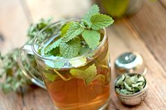 Cup of melissa tea royalty free stock photography