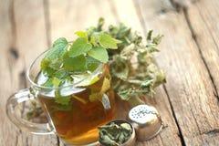 Cup of melissa tea stock photos