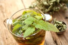 Cup of melissa tea stock image