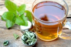 Cup of melissa tea royalty free stock image